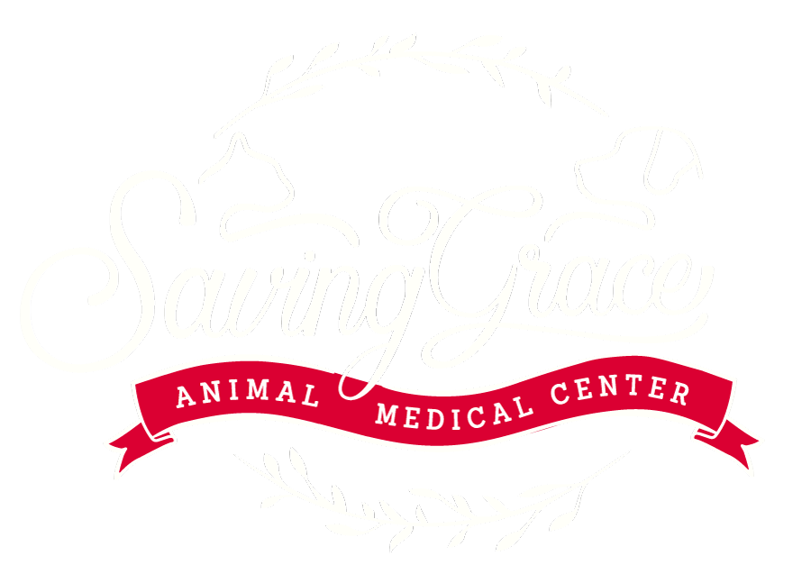 saving grace animal medical center